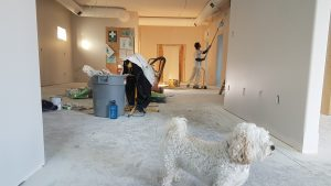 Man Remodeling Room